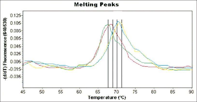 Figure 2: Specific melting temperature for A.niger (70°C), A.flavus (68°C), A.terreus (71°C) and A.fumigatus (69°C) are demonstrated