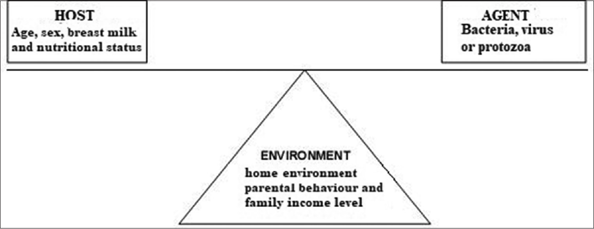 Figure 2: The states in the epidemiological triangle in which child diarrhea occurs